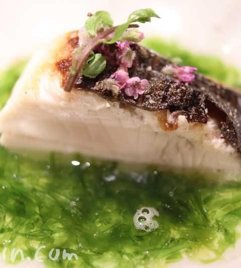 紀風のランチ3回目|恵比寿の和食・会席・懐石料理