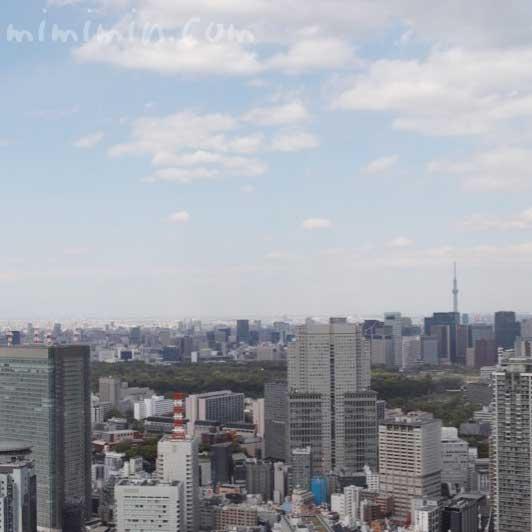 ザ・リッツ・カールトン東京 ザ・ロビーラウンジ&バー|六本木ミッドタウン
