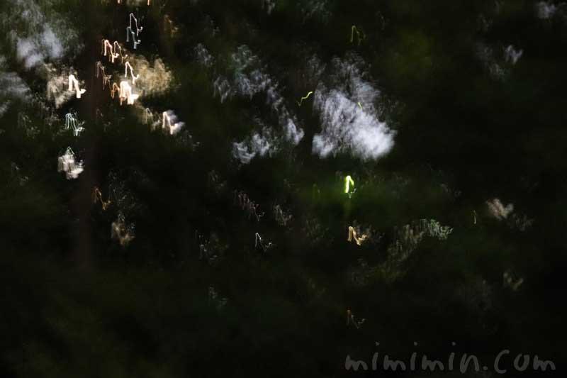 Q.E.D.クラブ・蛍の夕べ|蛍観賞付きディナーの写真