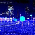 スターライトガーデン2018の写真(東京ミッドタウンのイルミネーション)の画像
