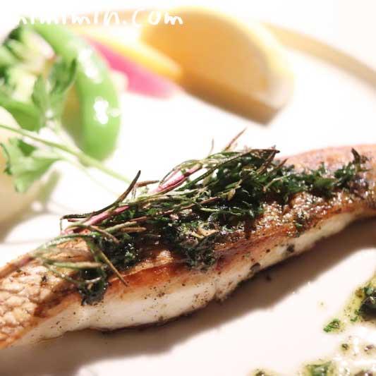 鯛のグリル|キャンティ 西麻布店でディナーの画像