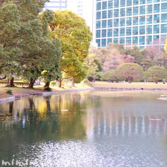 浜離宮恩賜庭園 池(東京)の画像