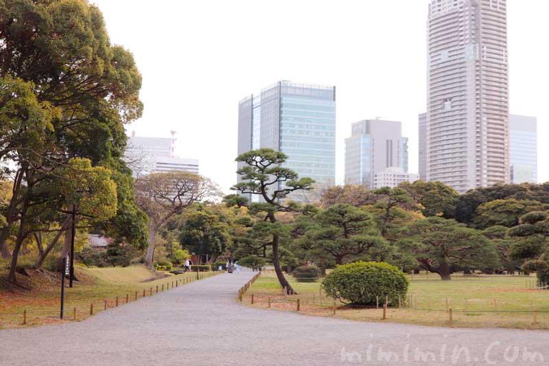 浜離宮恩賜庭園の景色(東京)の画像