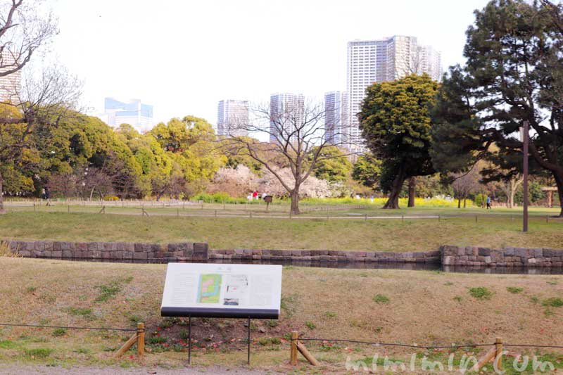 浜離宮恩賜庭園(東京)の画像