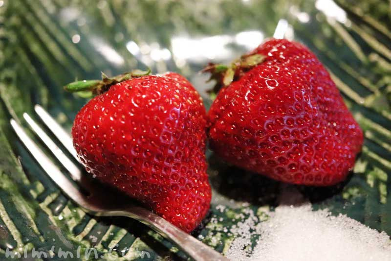 苺| 山の茶屋のランチ(WEB限定コース)|赤坂の鰻会席の画像