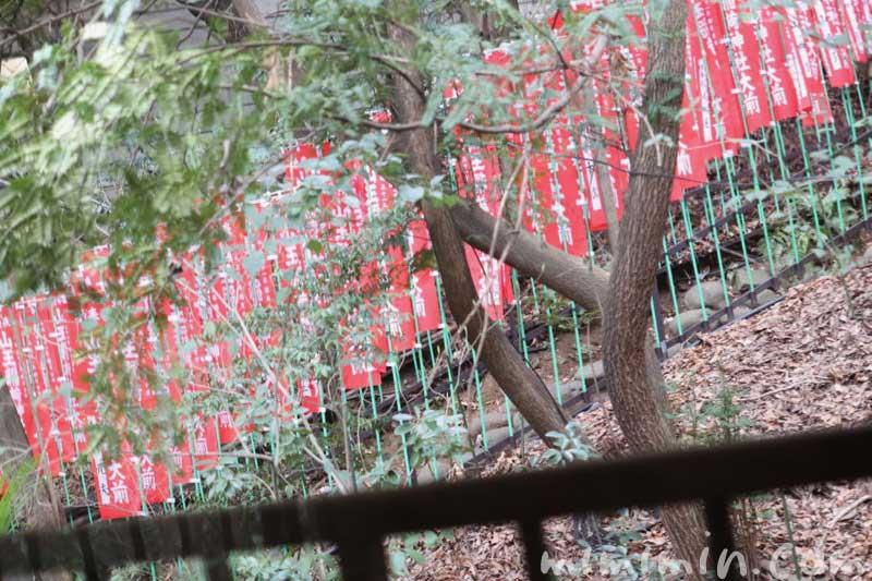 山の茶屋の部屋から見える神社|赤坂の鰻会席の画像