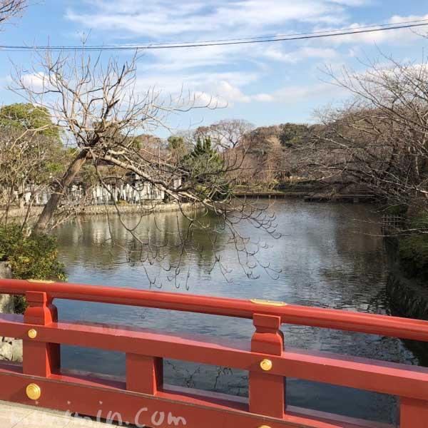 鶴岡八幡宮 赤い橋の写真