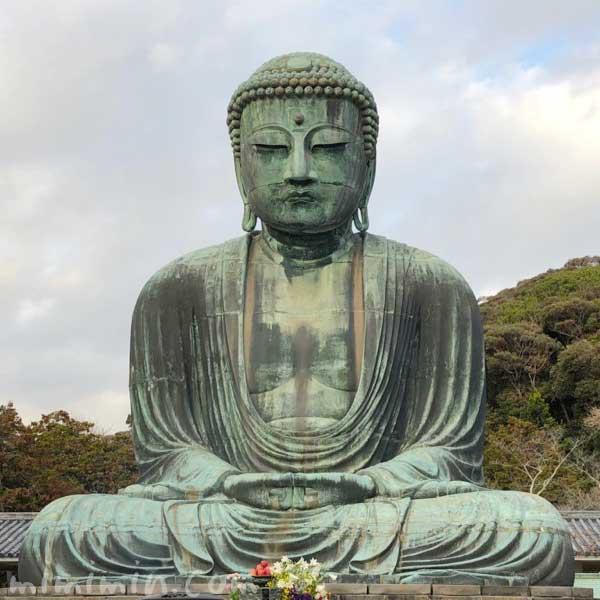 鎌倉大仏殿高徳院の画像