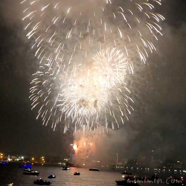 マリーンルージュ花火クルーズ・横浜スパークリングトワイライトの花火の画像