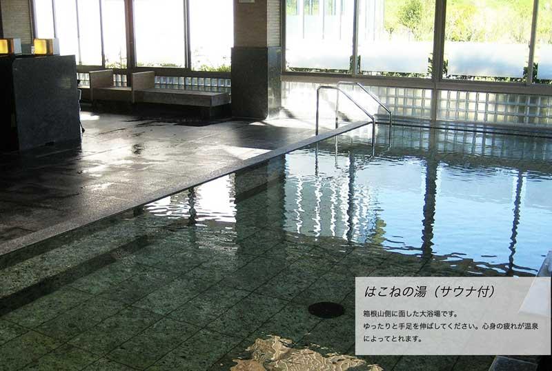 日帰り温泉「ヘルシーパーク裾野」のお風呂の写真