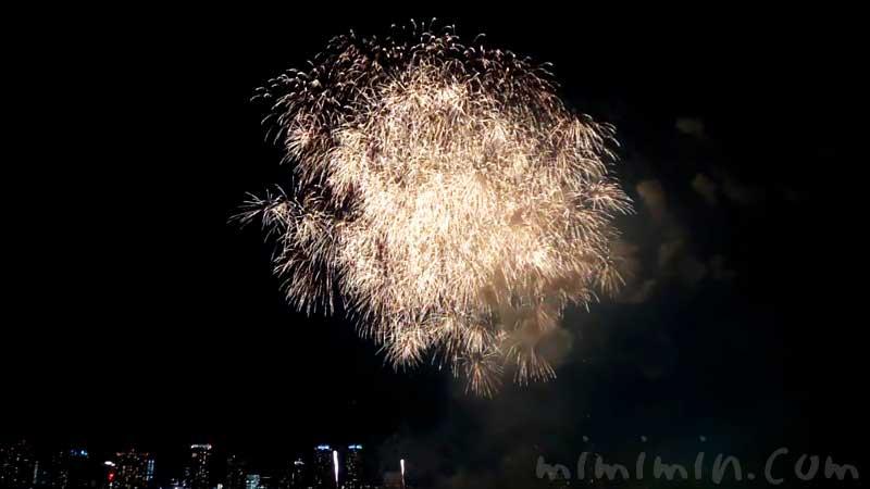 みなとみらいスマートフェスティバル2019 花火大会の画像