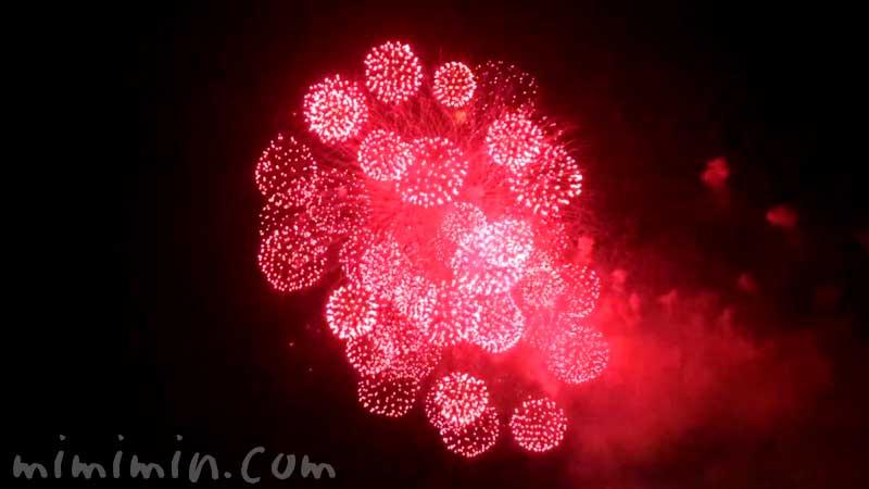 みなとみらいスマートフェスティバル2019花火の写真