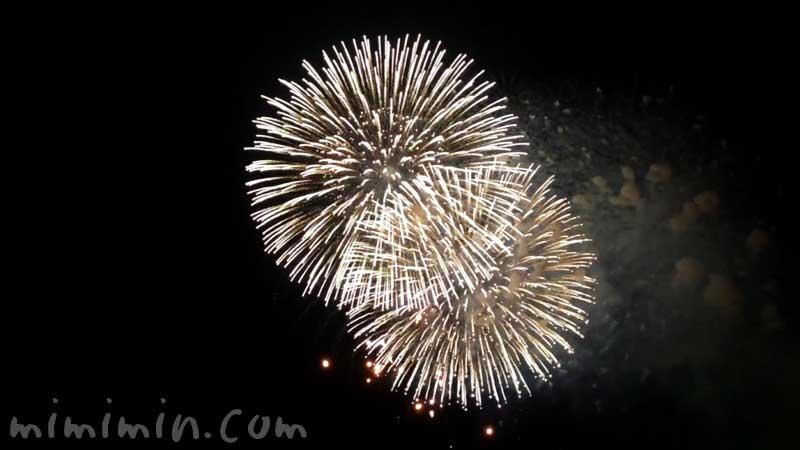横浜みなとみらいスマートフェスティバル花火大会の画像