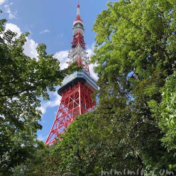 東京タワー とうふ屋うかいの画像