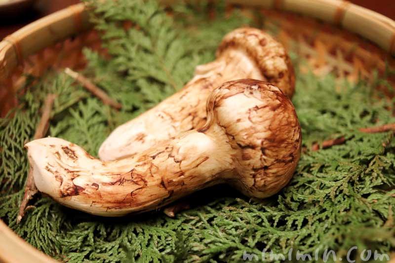 焼物 松茸の姿焼き|赤坂松葉屋の個室でランチ 赤坂会席の画像