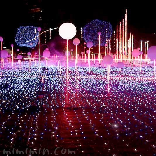 スターライトガーデン2019 クリスマスイルミネーション