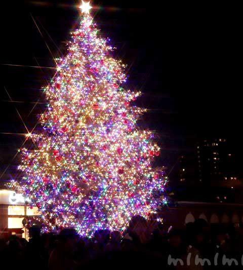 恵比寿ガーデンプレイスのクリスマスツリーとバカラのシャンデリア(2019年)
