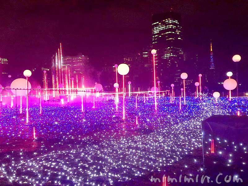 スターライトガーデン2019|六本木 東京ミッドタウン