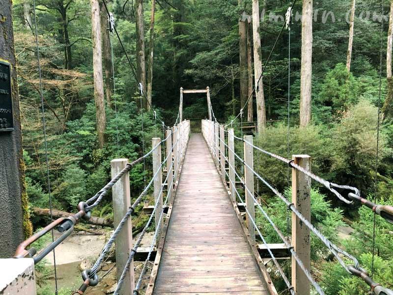 ヤクスギランドの吊橋の写真