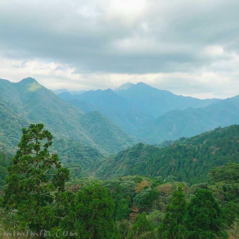 屋久島の山々の写真