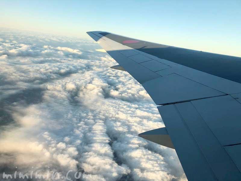 飛行機の雲海の画像