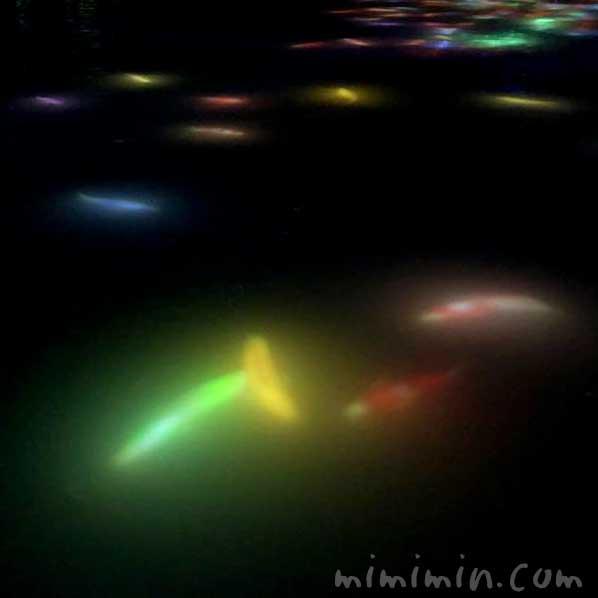 人と共に踊る鯉によって描かれる水面のドローイング チームラボ プラネッツの画像