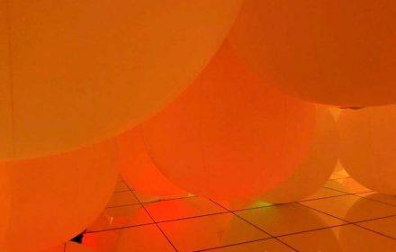 意思を持ち変容する空間、広がる立体的存在 – 自由浮遊、平面化する3色と曖昧な9色 チームラボ プラネッツ TOKYO(豊洲)の写真