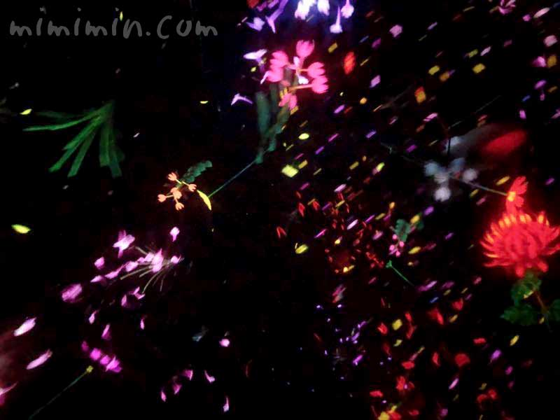 Floating in the Falling Universe of Flowersの画像