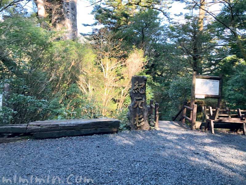 紀元杉 屋久島の観光地の写真