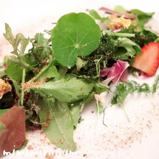 サラダ|リストランテセンソの写真