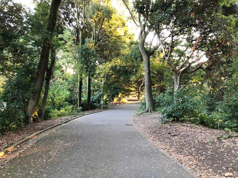 新宿御苑 11月の画像