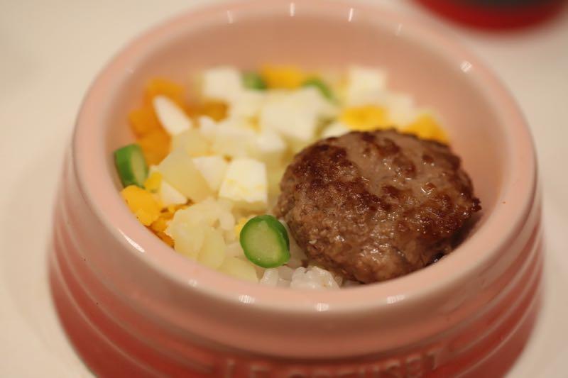 犬の手作りごはんのハンバーグ丼とポテトサラダを食べるチワワのチクワちゃん